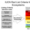 Using the IUCN Red List of Ecosystems to achieve science to action for coral reefs of the WIO!